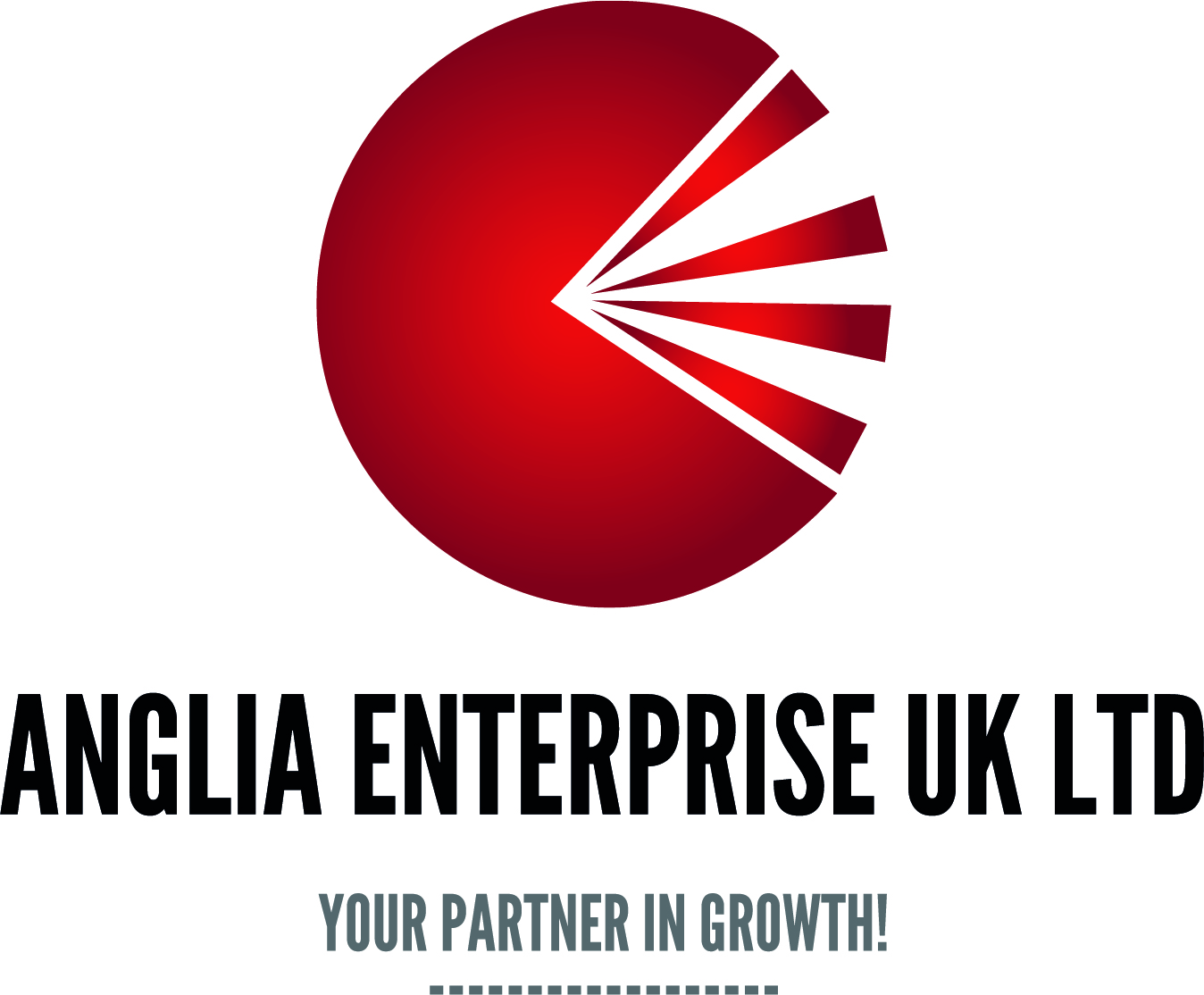 anglia-enterprise-logo